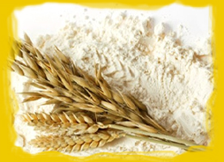We are Flour Manufacturer, Soya Flour Exporter, Flours Supplier and Wholesaler of Wheat Flour in Ahmedabad, India.